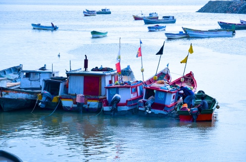 The fishing boats right outside the market.