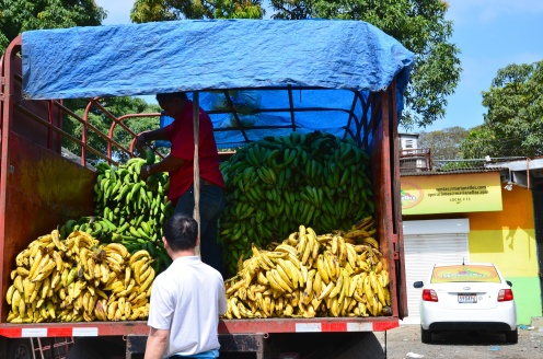 At the fruit and vegetable market we saw lots and lots of produce, including millions of plantains.