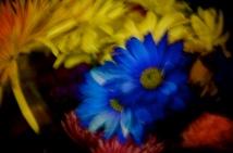 Just a blur