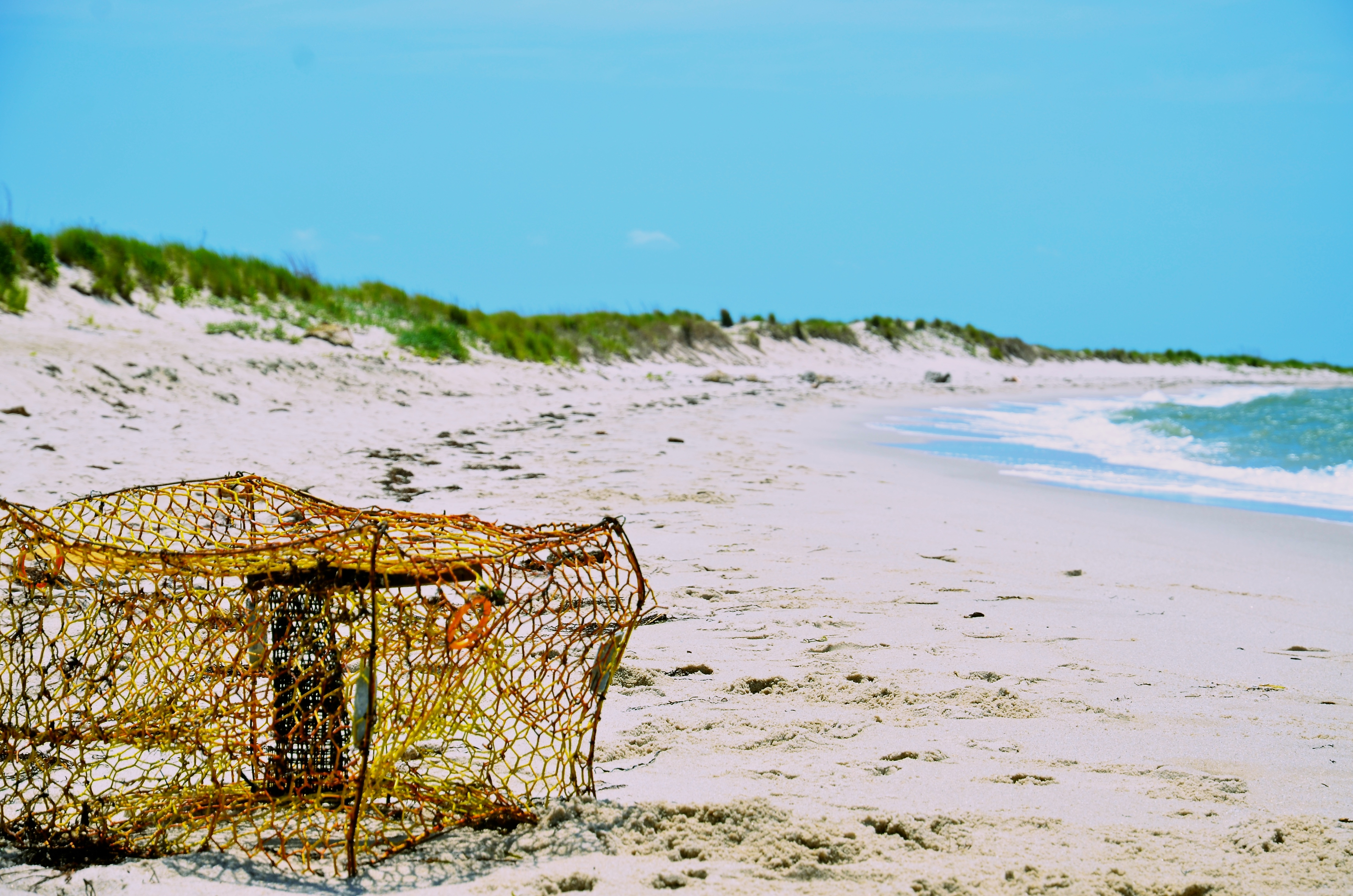 Trapped on Tangier Island, Virginia